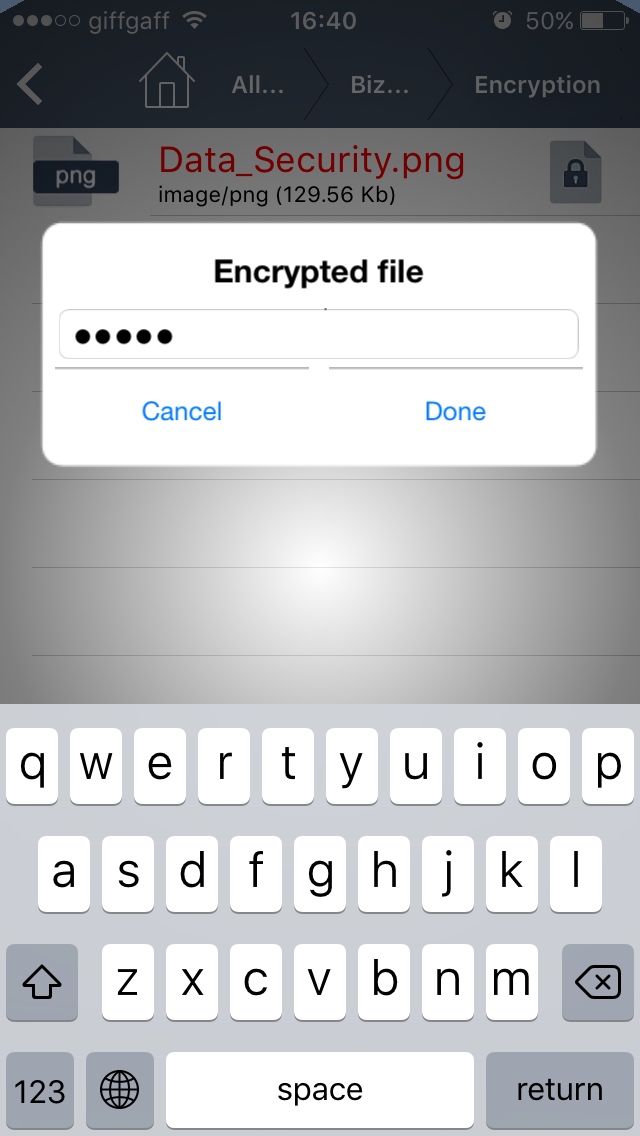 Encrypted file phone