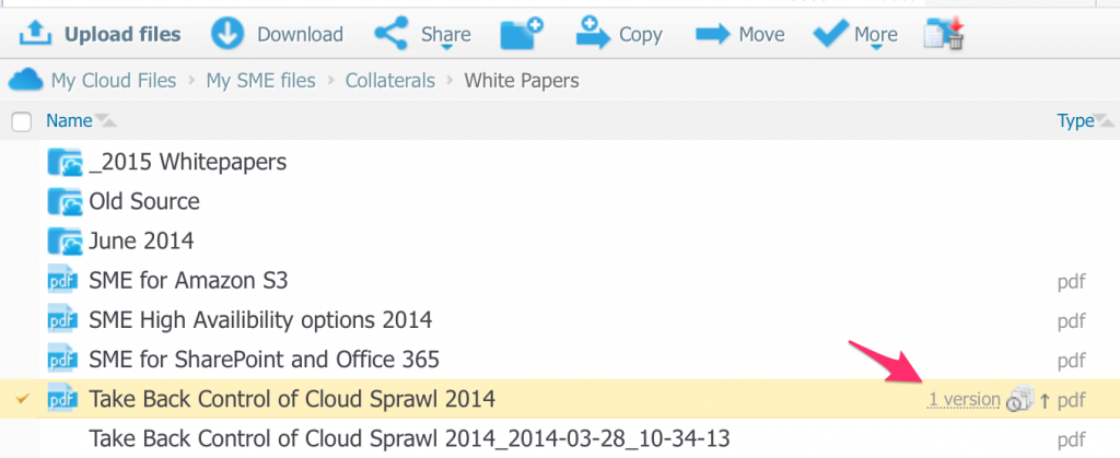 Visual File Versioning